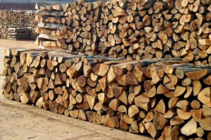 304849-za-zimovo-vo-struga-ima-dovolni-kolichini-ogrevno-drvo-10046