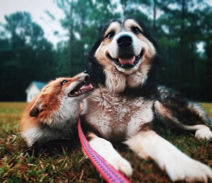 true_friendship_is_limitless_640_16